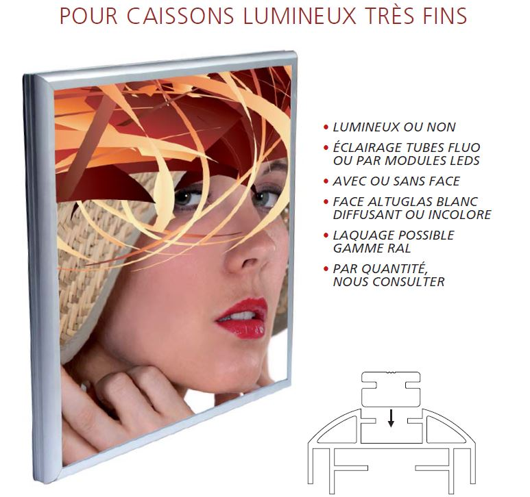 caisson lumineux 1face